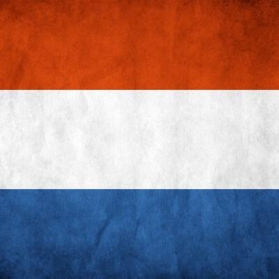 Голландские обои