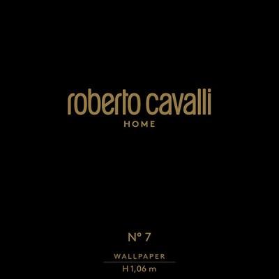 """ROBERTO CAVALLI 7"""